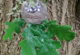 tree_clay_02.jpg