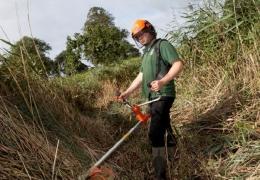 conservation_and_management_of_grassland.jpg