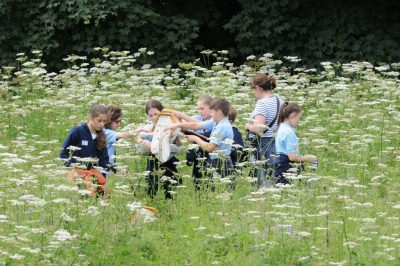 group with cowslips